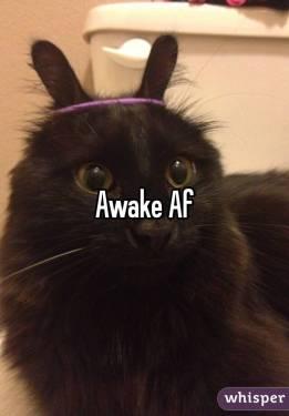 awake_af