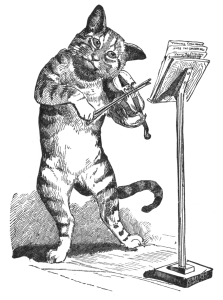 A cat plays a fiddle